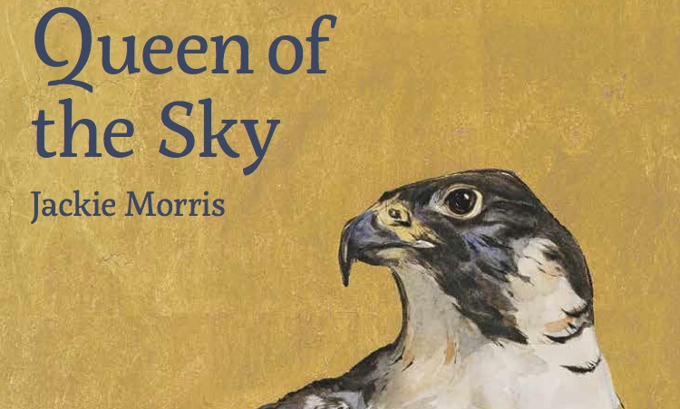 Image of Queen of the Sky with Jackie Morris