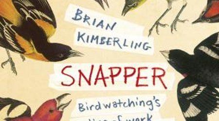 Image of Reading Group: Snapper by Brian Kimberling
