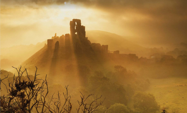 Image of Britain's Wild Ruins with Dave Hamilton