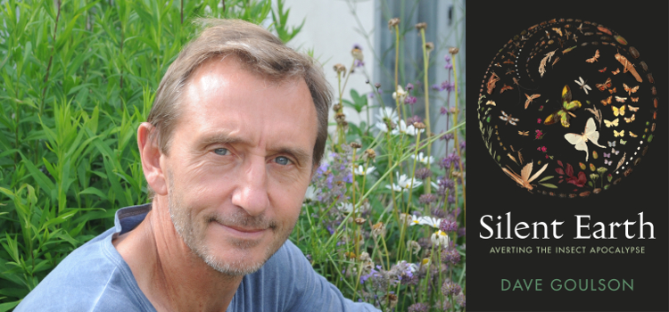 Image of Save the Bees with Professor Dave Goulson
